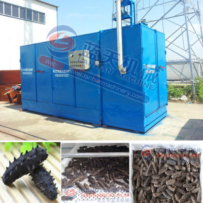 trepang dryer equipment