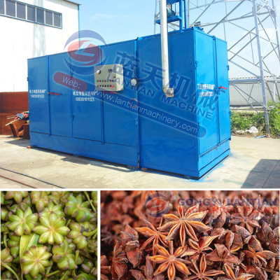 Anise Dryer