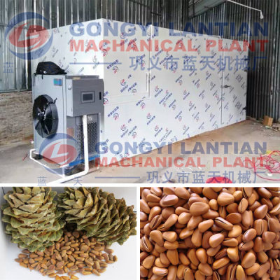 Pine Nut Dryer