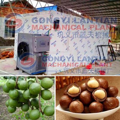 Macadamia Nut Drying Machine