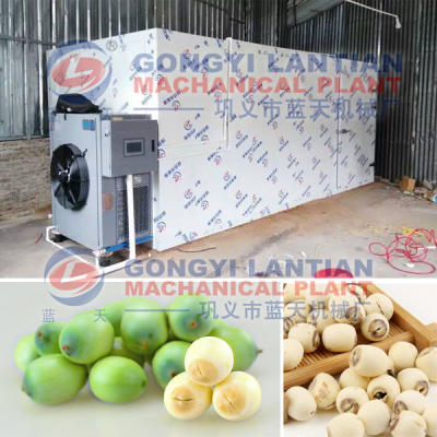 Lotus seed dryer machine